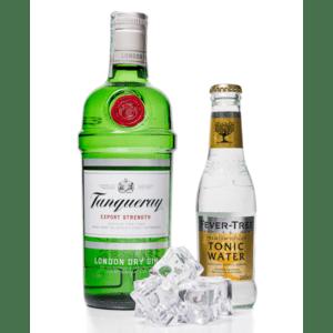 Gin Tanqueray Tonic Party Box